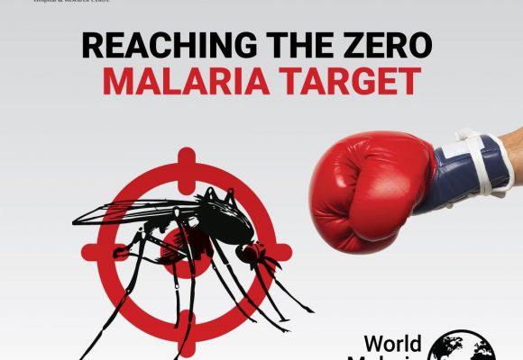 World Malaria Day